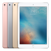 iPad Pro 9.7-inch (Wi-Fi), 32 GB, Silver, Product age: 12 months
