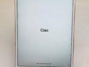 iPad Pro 10.5 Wi-Fi + Cellular 256GB, 256 GB, Rose GOLD
